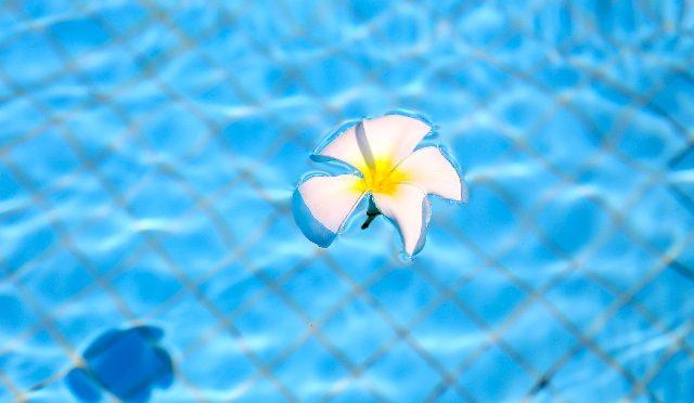 あなたはプールで花粉症が 悪化した経験ありませんか?