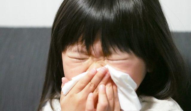 花粉症の起きる原因とは??そして対策方法とは・・・