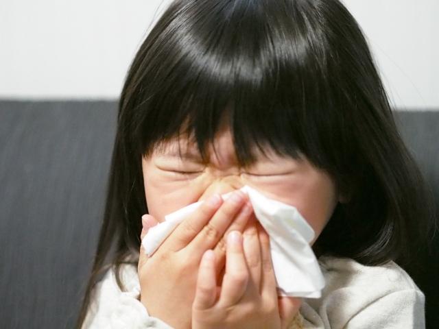 鼻がつまる花粉症の原因とは?